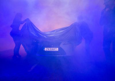 Ziebart Polska.foto Wojciech Robakowski/ HorsefieldPoznan 14.10.2017